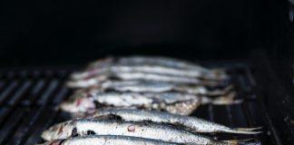 gastro, ryby, printové médiá
