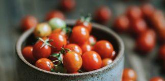 paradajky, rajčiny, gastro, guest, printové médiá