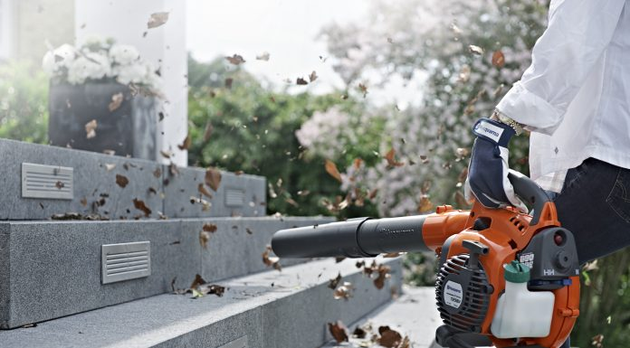 printovemedia, precitaj.online, orava, zima, zahrada, zazimovanie, uprava zahrady, starostlivost o zahradu