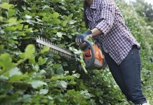 precitajonline, precitaj.online, husqvarna, plotostrih, strihanie, strihanieplotu, zahrada, krasnazahrada, zahradne naradie